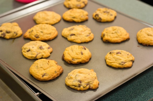 Chocolate-Chip-Pudding-Cookies